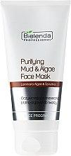 Parfüm, Parfüméria, kozmetikum Arctisztító maszk agyaggal és algával - Bielenda Professional Purifying Mud and Algae Face Mask