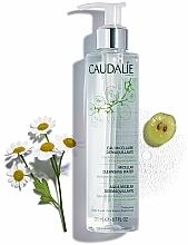 Micellás sminklemosó víz - Caudalie Make-Up Remover Cleansing Water — fotó N3