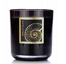 Parfüm, Parfüméria, kozmetikum Illatosított gyertya pohárban - Kringle Candle Nautilus Black Jar Candle