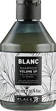 Parfüm, Parfüméria, kozmetikum Hajdúsító sampon - Black Professional Line Blanc Volume Up Shampoo