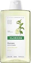 Parfüm, Parfüméria, kozmetikum Tonizáló sampon citrom kivonattal - Klorane Shampoo With Citrus Pulp