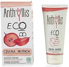 Parfüm, Parfüméria, kozmetikum Anti-age arckrém - Anthyllis Anti-Aging Face Cream