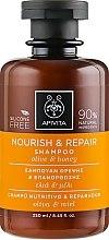 Parfüm, Parfüméria, kozmetikum Helyreállító sampon olíva olajjal és mézzel - Apivita Nourish And Repair Shampoo With Olive And Honey