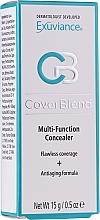 Parfüm, Parfüméria, kozmetikum Multifunkcionális korrektor - Exuviance Cover Blend Multi-Function Concealer