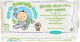 Parfüm, Parfüméria, kozmetikum Tisztító nedves törlőkendő - Earth Friendly Baby Aloe Vera Wet Wipes