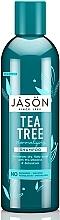 """Parfüm, Parfüméria, kozmetikum Normalizáló sampon """"Teafa"""" - Jason Natural Cosmetics Tea Tree Treatment Shampoo"""