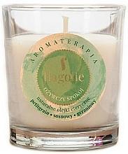 """Parfüm, Parfüméria, kozmetikum Illatosított gyertya """"Frissítő"""" - Flagolie Fragranced Candle Refreshing Peace"""