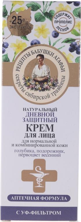 Védő nappali arckrém - Agáta nagymama receptjei — fotó N1