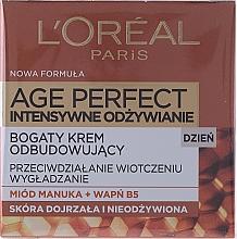 Parfüm, Parfüméria, kozmetikum Nappali arckrém - L'Oreal Paris Age Perfect Intensive Nutrition 60+ Regenerating Day Cream