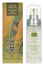 Parfüm, Parfüméria, kozmetikum Frais Monde Banana Leaf And White Musk - Eau De Toilette