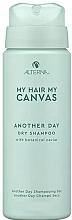 Parfüm, Parfüméria, kozmetikum Száraz sampon - Alterna My Hair My Canvas Another Day Dry Shampoo