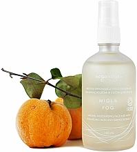Parfüm, Parfüméria, kozmetikum Hidratáló arcpermet hialuronsavval és birsalma kivonattal - Uoga Uoga