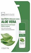 """Parfüm, Parfüméria, kozmetikum Ajakápoló """"Aloe vera"""" - IDC Institute Lip Balm Aloe Vera"""