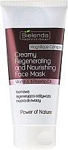Parfüm, Parfüméria, kozmetikum Tápláló és regeneráló arcmaszk - Bielenda Professional Power Of Nature Creamy Regenerating And Nourishing Face Mask