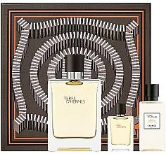 Parfüm, Parfüméria, kozmetikum Hermes Terre D'Hermes - Szett (edt/100 ml + ash/40 ml + edt/5 ml)