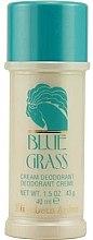 Parfüm, Parfüméria, kozmetikum Elizabeth Arden Blue Grass - Dezodor