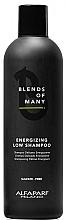 Parfüm, Parfüméria, kozmetikum Energizáló sampon véknyszálú- és gyenge hajra - Alfaparf Milano Blends Of Many Energizing Low Shampoo