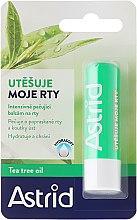 Parfüm, Parfüméria, kozmetikum Ajakápoló balzsam - Astrid Intensive Care Lip Balm And Tea Tree