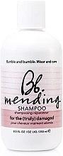 Parfüm, Parfüméria, kozmetikum Helyreállító sampon sérült hajra - Bumble and Bumble Mending Shampoo
