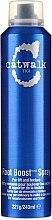 Hajformázó spray - Tigi Catwalk Your Highness Root Boost Spray — fotó N1