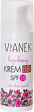 Parfüm, Parfüméria, kozmetikum BB-krém - Vianek BB Cream SPF15