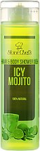 Parfüm, Parfüméria, kozmetikum Haj- és testápoló gél - Hristina Stani Chef's Hair And Body Shower Gel Icy Mojito