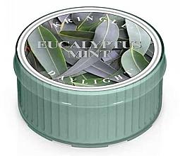 Parfüm, Parfüméria, kozmetikum Tea gyertya - Kringle Candle Daylight Eucalyptus Mint