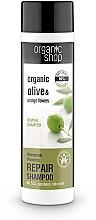 """Parfüm, Parfüméria, kozmetikum Hajsampon """"Regeneráláls. Marokkói hercegnő"""" - Organic Shop Organic Olive and Argan Oil Repair Shampoo"""