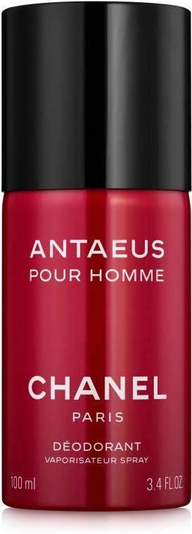 Chanel Antaeus - Dezodor — fotó N1
