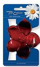 Parfüm, Parfüméria, kozmetikum Hajcsat 24405, piros - Top Choice
