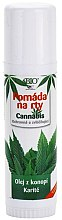 Parfüm, Parfüméria, kozmetikum Ajakápoló balzsam - Bione Cosmetics Cannabis Lip Balm with Shea Butter