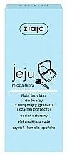 Parfüm, Parfüméria, kozmetikum Folyékony korrektor - Ziaja Jeju Fluid