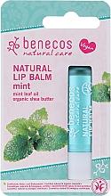 """Parfüm, Parfüméria, kozmetikum Ajakbalzsam """"Menthol"""" - Benecos Natural Care Lip Balm Mint"""