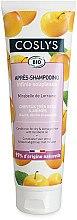 Parfüm, Parfüméria, kozmetikum Hajkondicionáló mirabella olajjal száraz hajra - Coslys Dry Hair Conditioner