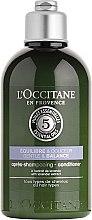 "Parfüm, Parfüméria, kozmetikum Kondicionáló ""Gyengéd összhang"" - L'Occitane Aromachologie Gentle & Balance Conditioner"