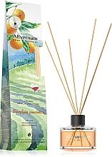 """Parfüm, Parfüméria, kozmetikum Aromadiffúzor """"Brazil narancs"""" - Allverne Home&Essences Diffuser"""