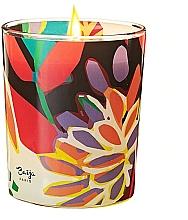 Parfüm, Parfüméria, kozmetikum Illatosított gyertya - Baija Vertige Solaire Scented Candle
