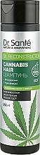 Parfüm, Parfüméria, kozmetikum Sampon - Dr. Sante Cannabis Hair Shampoo