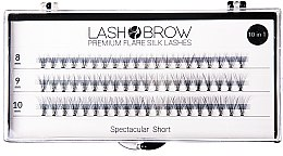Parfüm, Parfüméria, kozmetikum Műszempilla - Lash Brown Premium Flare Silk Lashes Spectacular Short