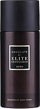 Parfüm, Parfüméria, kozmetikum Avon Absolute by Elite Gentleman - Dezodor