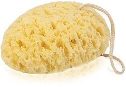 Parfüm, Parfüméria, kozmetikum Fürdőszivacs 6009, sárga - Donegal Bath Sponge