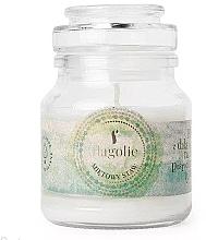"""Parfüm, Parfüméria, kozmetikum Illatgyertya üvegben """"Menta tó"""" - Flagolie Scented Candle Boho Mint Pond"""