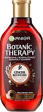"""Parfüm, Parfüméria, kozmetikum Sampon """"Gyömbéres regeneráló"""" fáradt és vékonyszálú hajra - Garnier Botanic Therapy"""