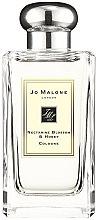 Parfüm, Parfüméria, kozmetikum Jo Malone Nectarine Blossom and Honey - Kölni (teszter kupakkal)