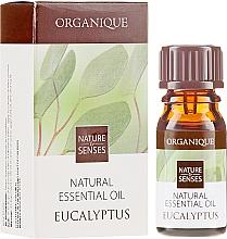 """Parfüm, Parfüméria, kozmetikum Illóolaj """"Eukaliptusz"""" - Organique Natural Essential Oil Eucalyptus"""