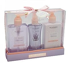 Parfüm, Parfüméria, kozmetikum Szett - Cassardi Lavender (sh/gel 200ml +b/balm 200ml + mist 100ml)