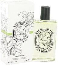 Parfüm, Parfüméria, kozmetikum Diptyque L'eau des Hesperides - Eau De Toilette