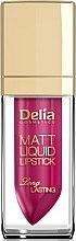 Parfüm, Parfüméria, kozmetikum Ajakrúzs - Delia Cosmetics Matt Liquid Lipstick