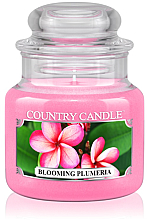 """Parfüm, Parfüméria, kozmetikum Illatgyertya """"Virágzó Frangipáni"""" üvegben - Country Candle Blooming Plumeria"""
