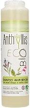 Parfüm, Parfüméria, kozmetikum Korpásodás elleni sampon - Anthyllis Anti Dandruff Shampoo